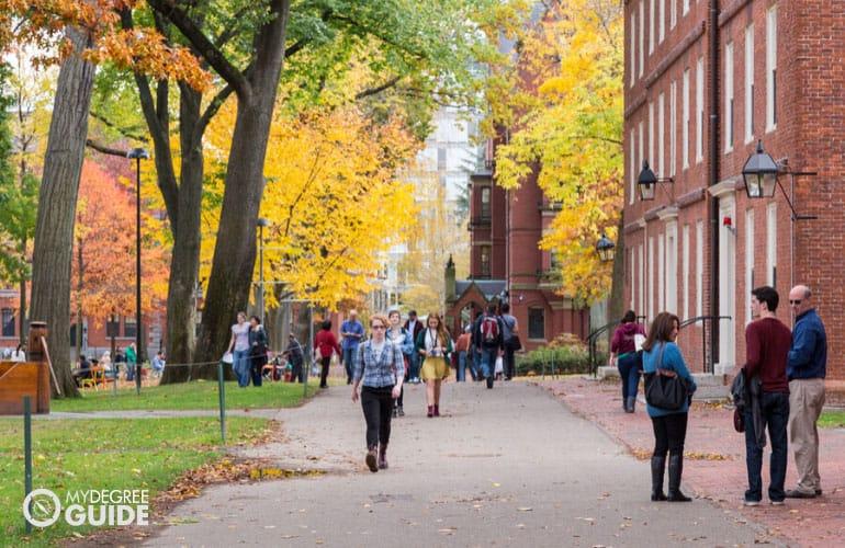 bachelor's degree students walking across university campus