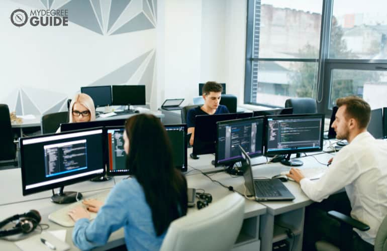 web developers working in an office