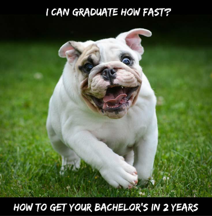 2 year bachelor degree programs