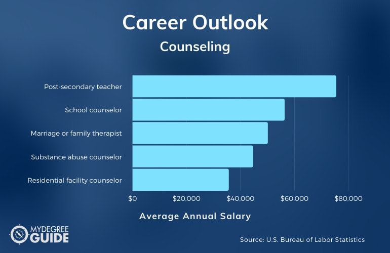 PhD in Counseling Career Outlook