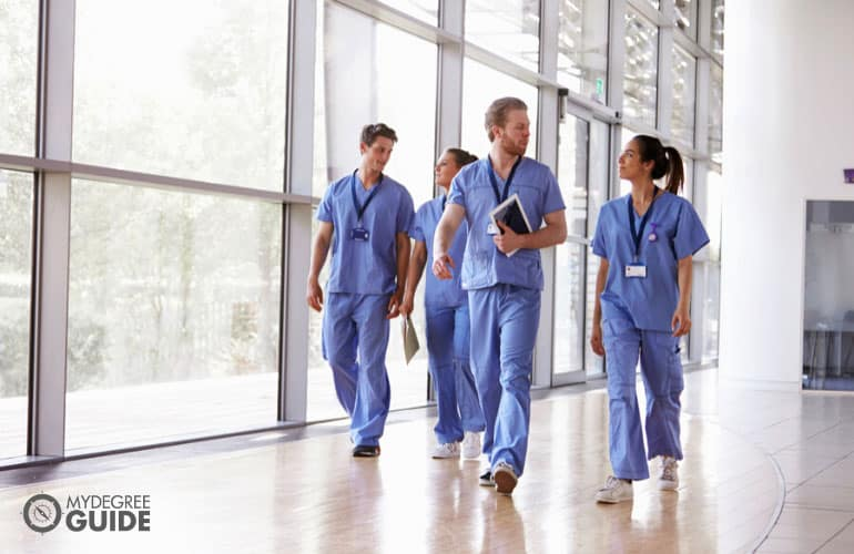 online phd nursing programs
