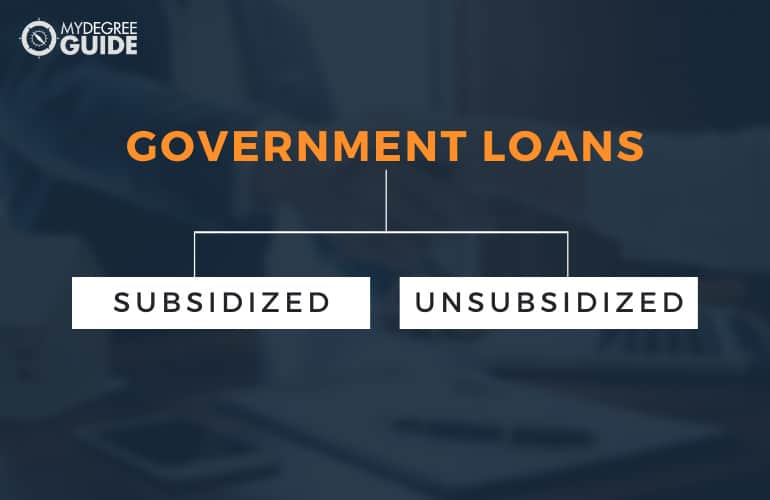 Types and Amounts of Government Loans