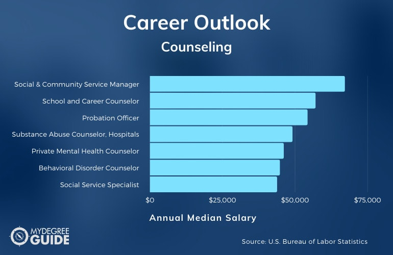 Careers with an Accelerated Counseling Degree