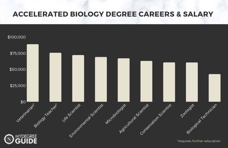 Careers with an Accelerated Biology Degree
