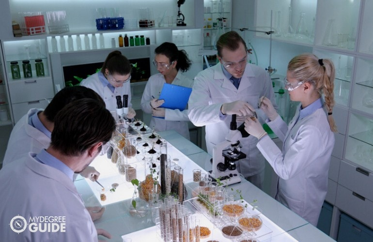 biologists working in a laboratory