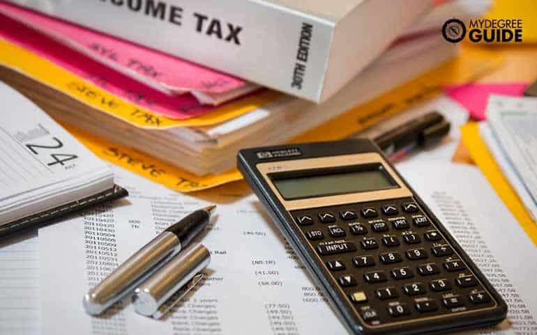 accountants compare tax information