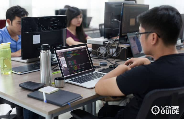 developers working in the office