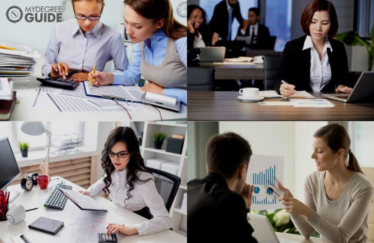 accountants working in different settings