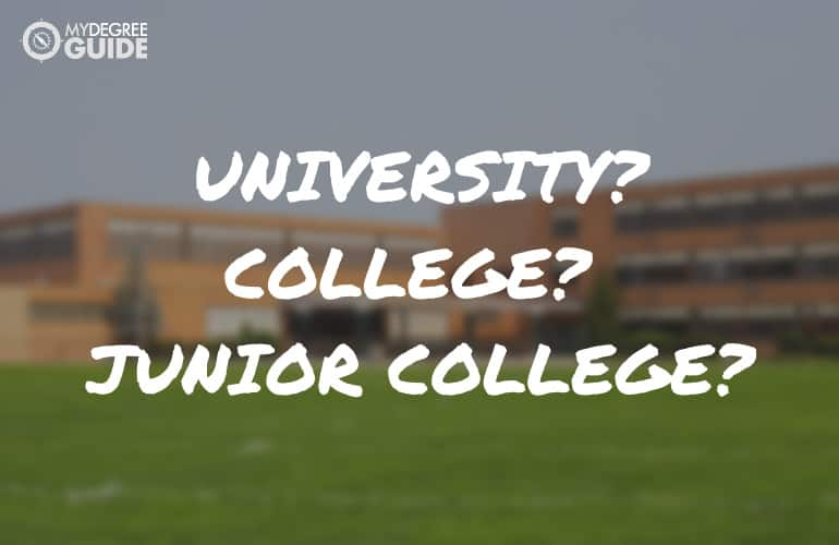 Are University and College the Same Thing?