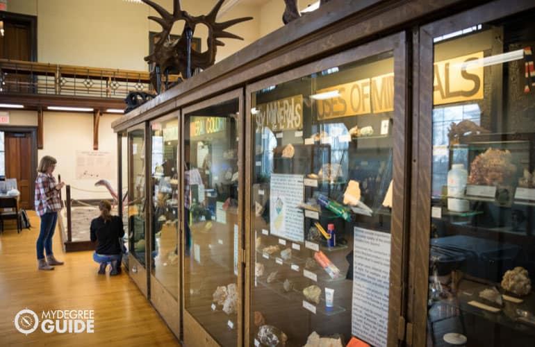museum curators arranging the displays