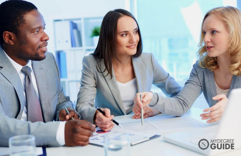 Financial Auditors working together in an office