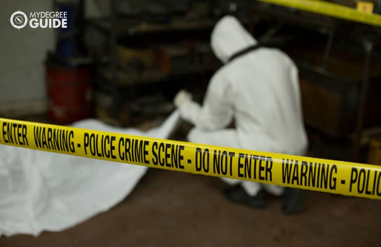 forensic scientist examining the crime scene