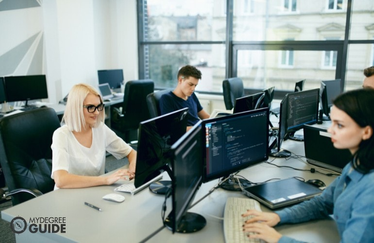 computer programmers working in the office