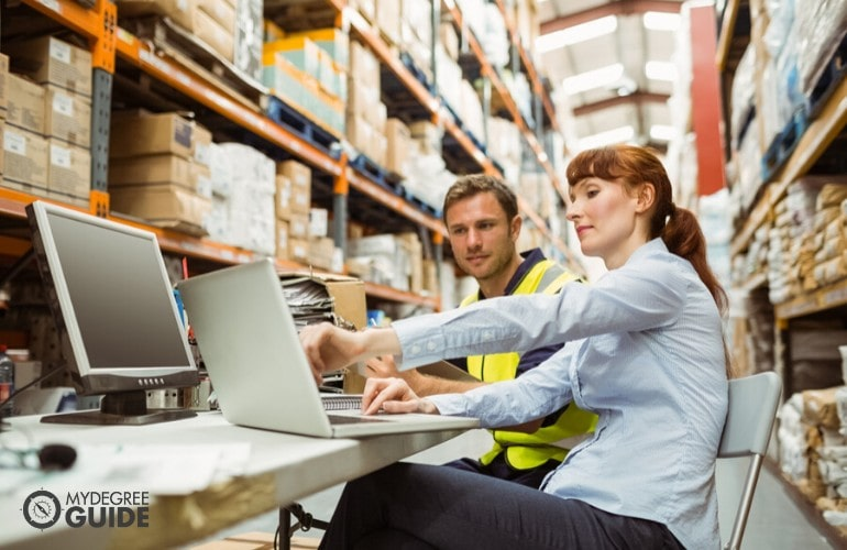 logistics manager checking online inventories with employee