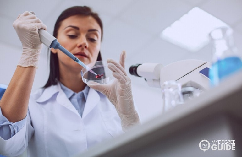epidemiologist working in a laboratory