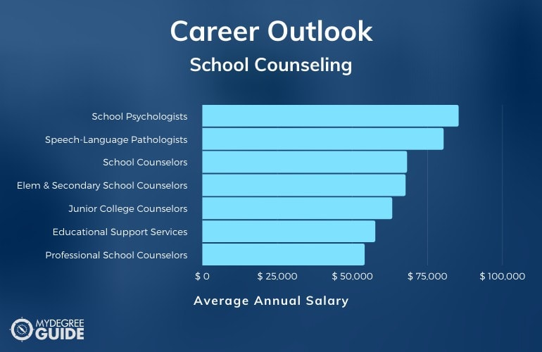 School Counseling Careers & Salaries
