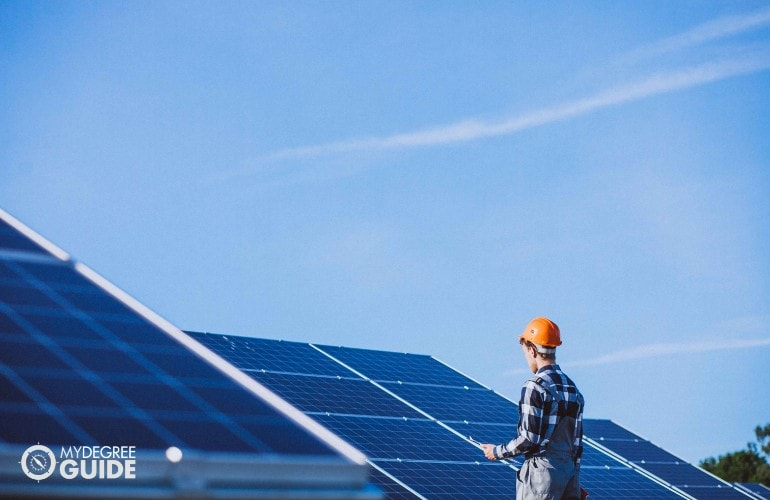 man checking the solar panels