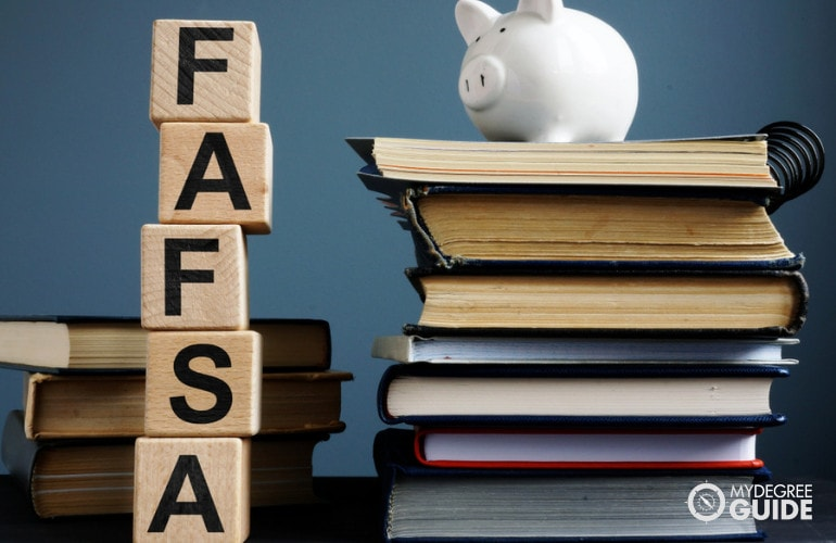 screenshot of FAFSA website