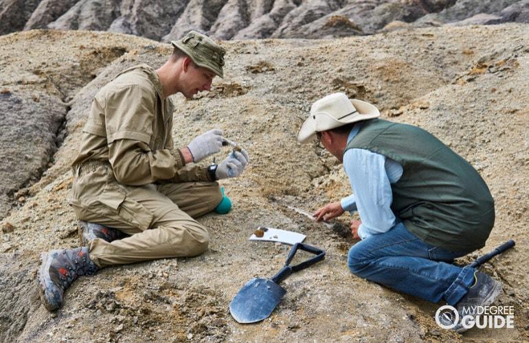 Anthropology vs. Archeology