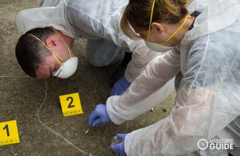 CSI Degree careers